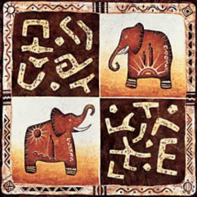 Moga-Africa-46170