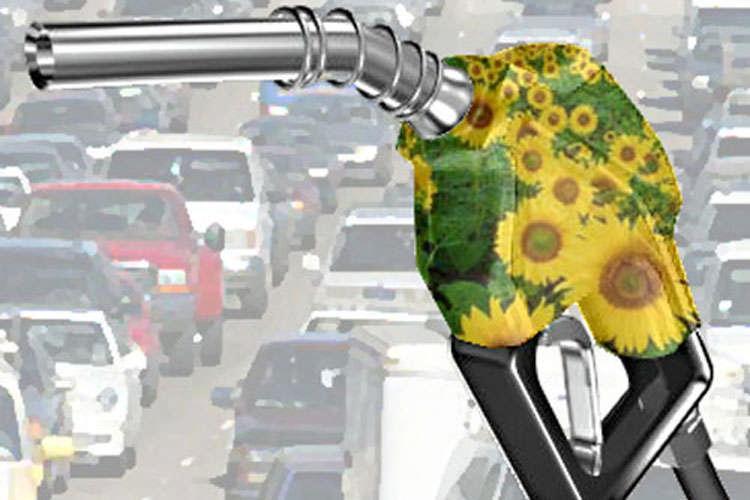 156789_2534_big_Biocarburanti5