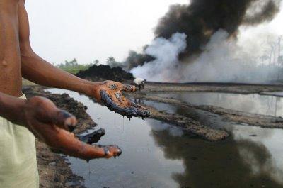 Delta niger-delta (La perfettanotizia.com)